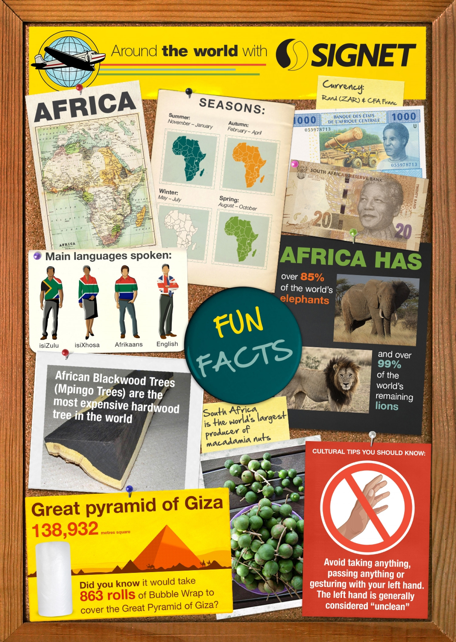 Fun Facts: Africa Infographic