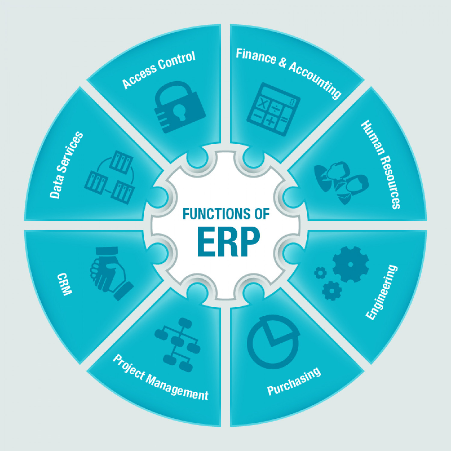 Functions of ERP Infographic