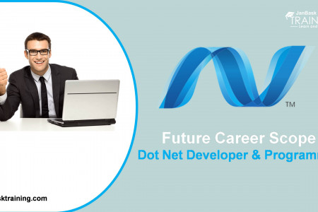 Future Career Scope For Dot Net Developer Infographic