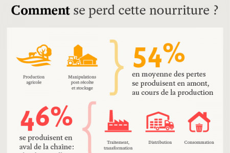 Gaspillage alimentaire Infographic