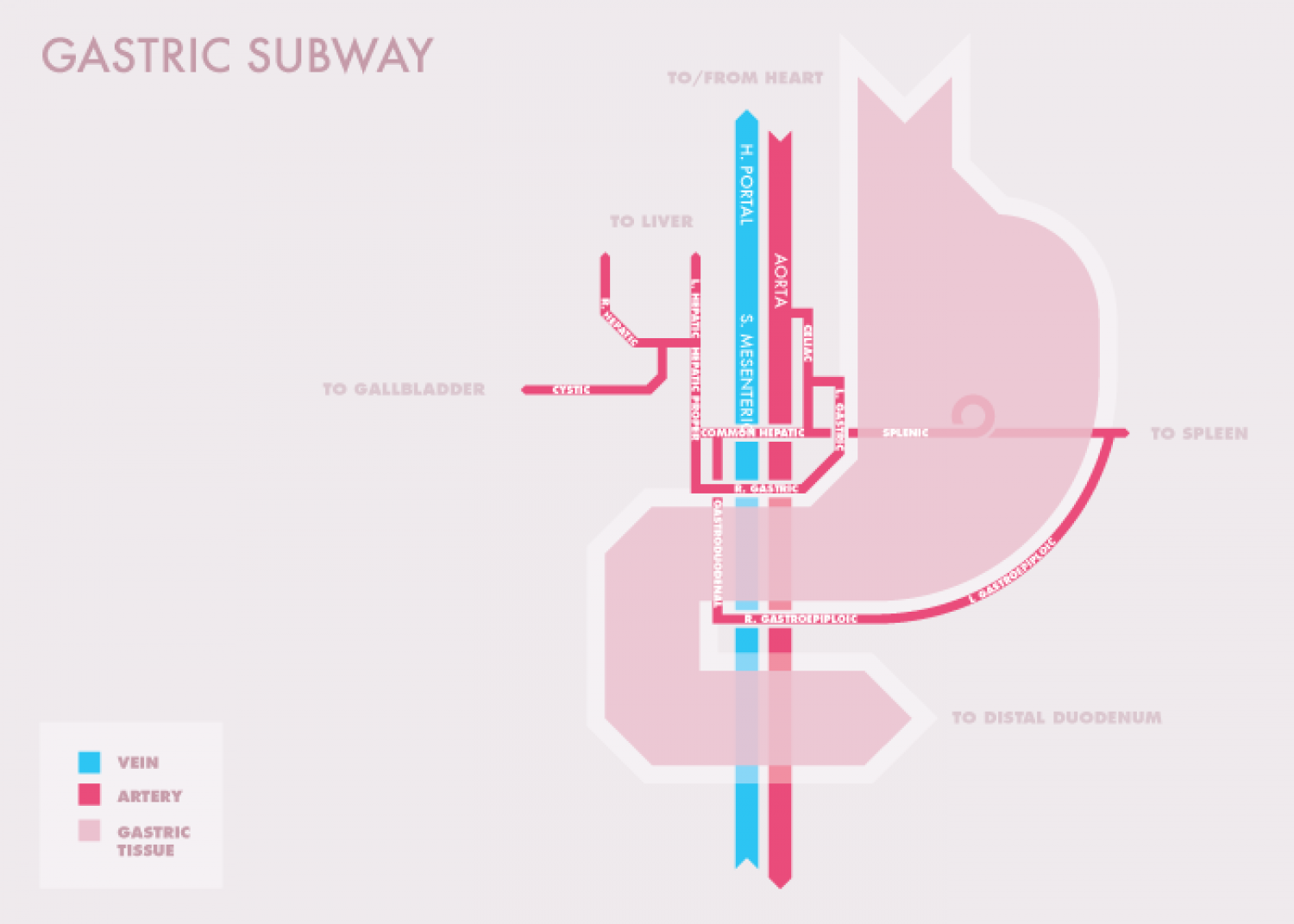 Gastric Subway Infographic