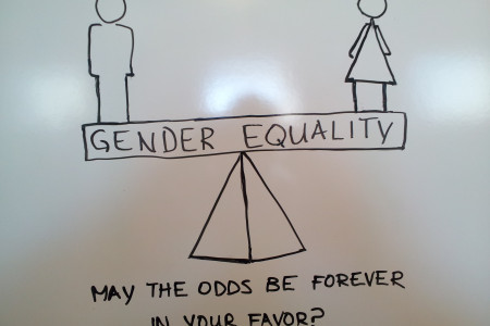 Gender Equality Infographic