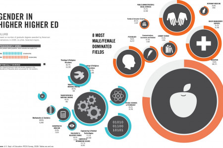 Gender in Higher Higher Ed Infographic