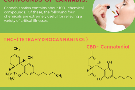 Get access to amazing cannabinoids with a medical cannabis card in Orange County Infographic