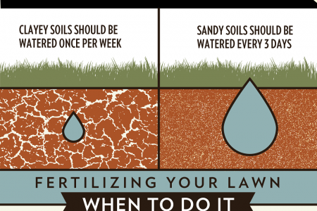 Get Greener Grass with Proper Watering and Fertilizing Infographic