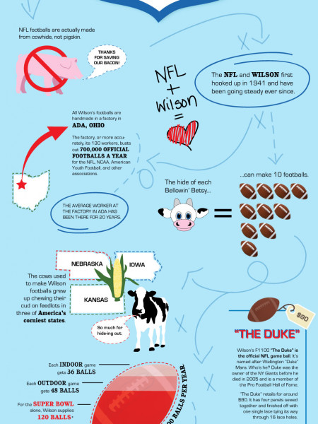 Get Primed on the Pigskin Infographic