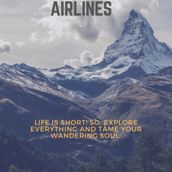 Get the best deals on Aeromexico Airline Flightshassle-freely! | Visual.ly