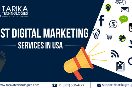 Get the Best Digital Marketing Services in USA Infographic