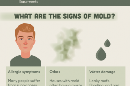 GET TO KNOW THE FACTS ABOUT MOLD  Infographic