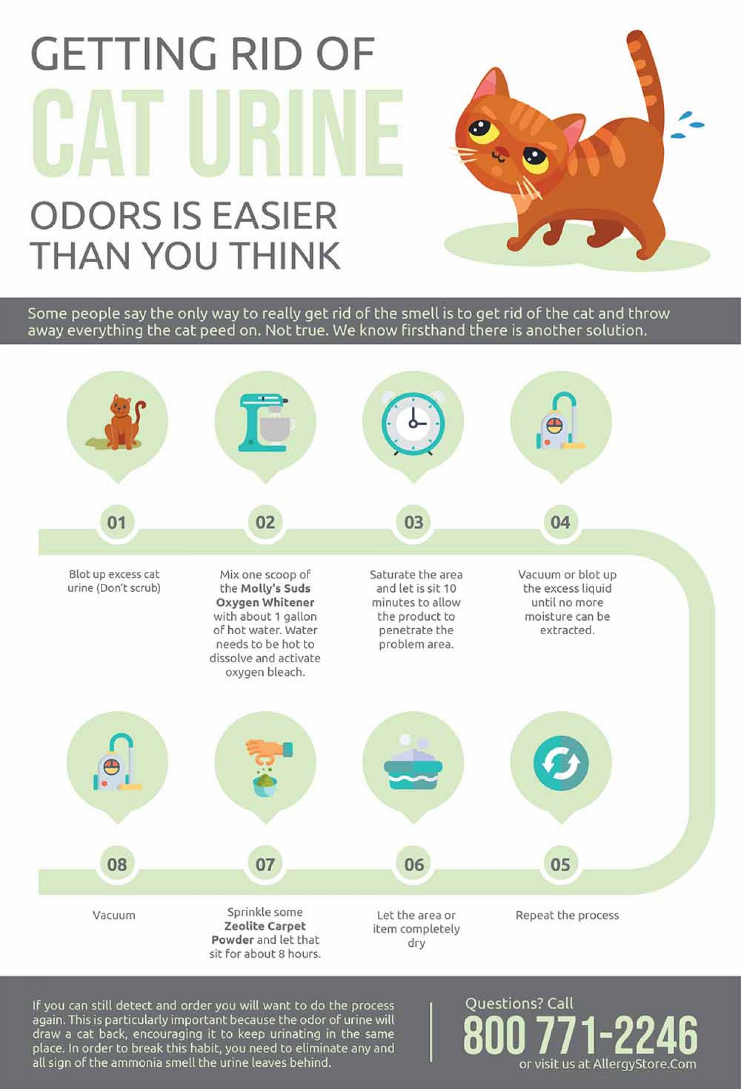 How To Get Rid Of Cat Urine Smell >> Getting Rid Of Cat Urine Odors Is Easier Than You Think