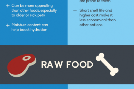 Getting to Know Your Kibble: Pet Food 101 Infographic