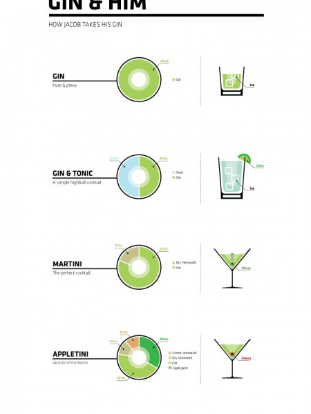 Gin & Him Infographic