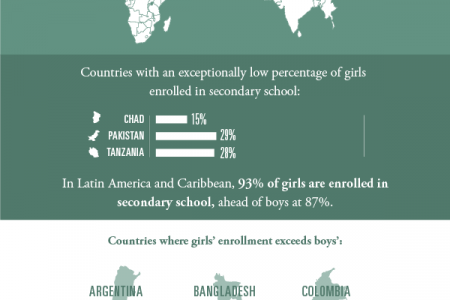 Girl's Education Infographic