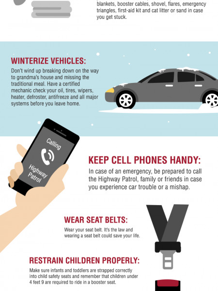 Give the Gift of Safe Travel Infographic