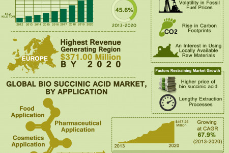 Global Bio Succinic Acid Market (Applications and Geography) - Size, Share, Trends, Analysis, Research, Future Demand, Scope and Forecast, 2013 - 2020 Infographic