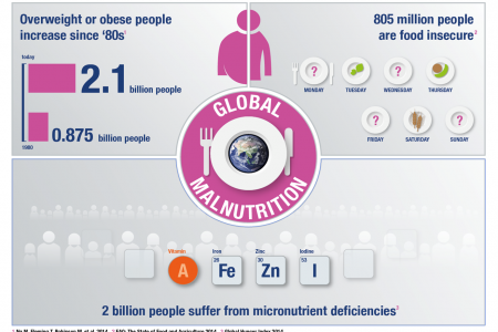 Global malnutrition Infographic