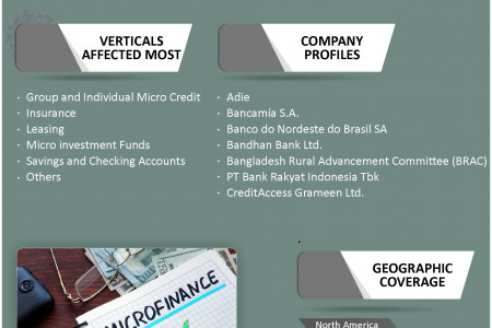 Global Microfinance Industry Size, Share, Growth, Forecast 2019-2025 Infographic