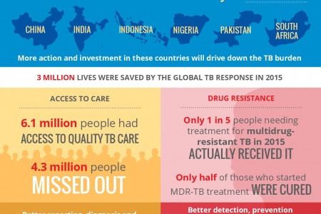 Global Tuberculosis Report   Infographic