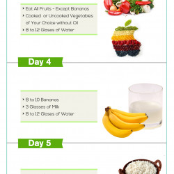 GM Diet Day #4 (Rules & Meal Plan)
