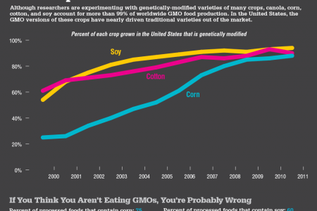 GMO Crops Infographic Infographic