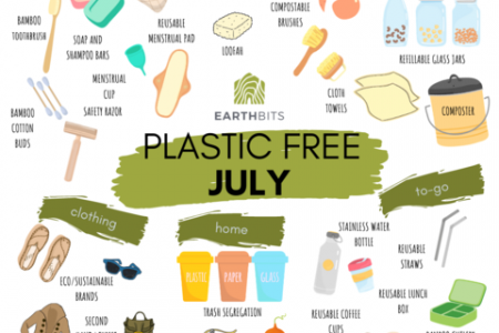 Go Plastic Free in July - Tips and Resources Infographic