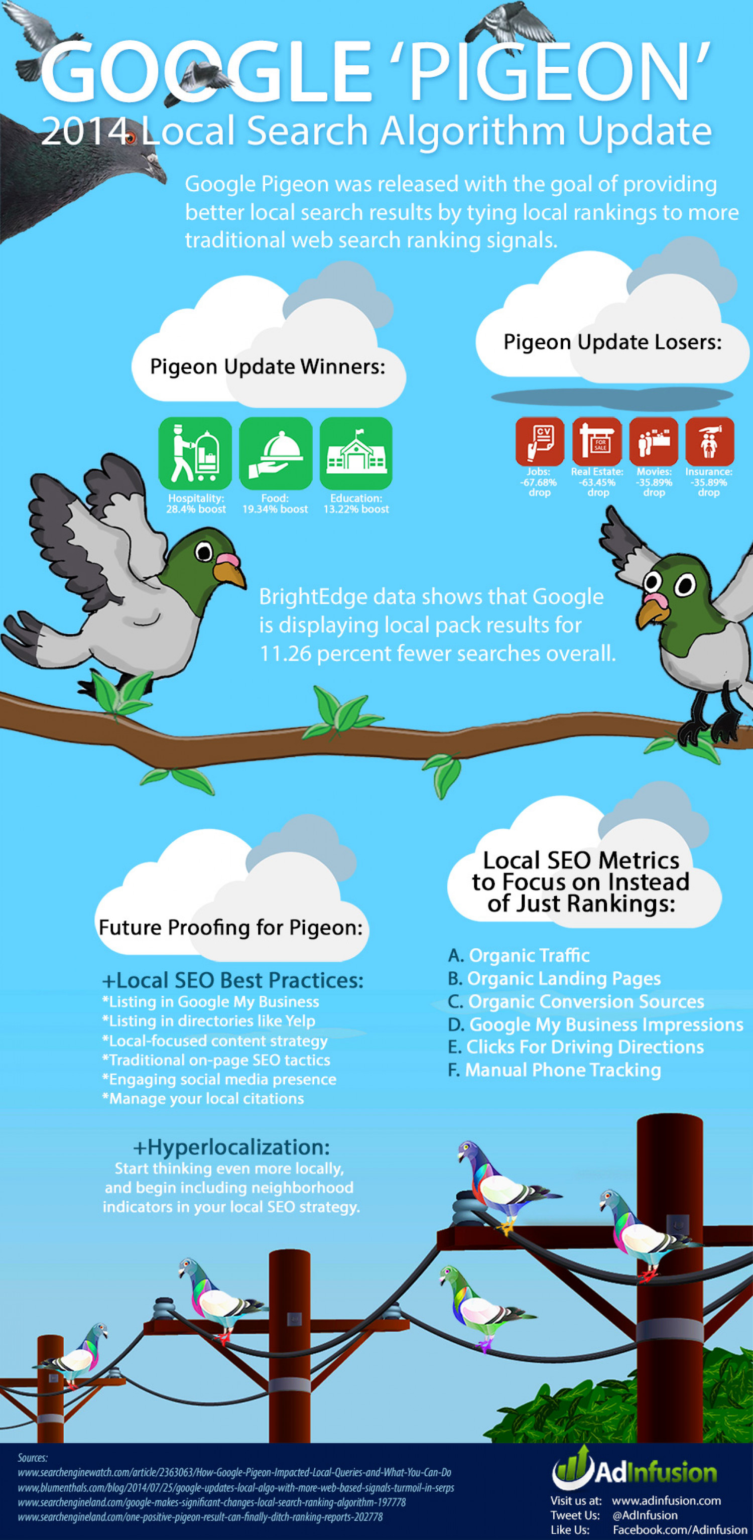 Google Pigeon Update Infographic