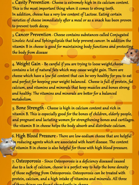 Got Cheese? Infographic
