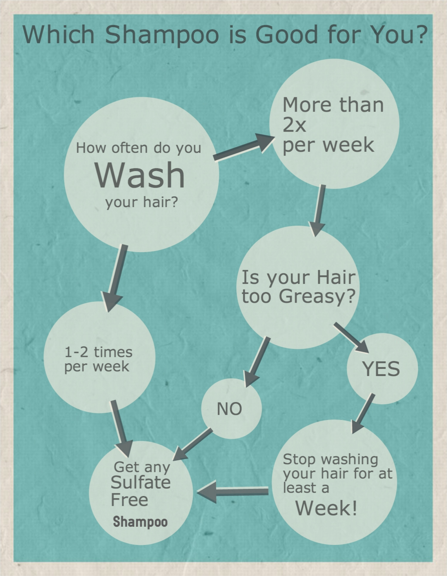 Which Shampoo is Good for you? Infographic