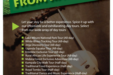 Gracelands African Vacations Flyer Infographic