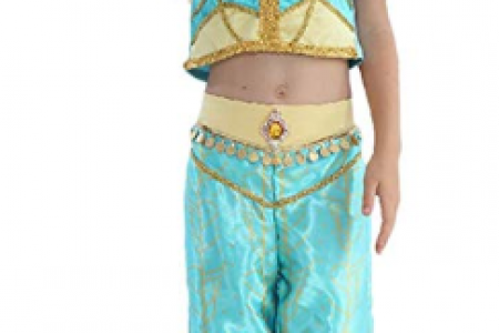 Gream Baby Princess Costumes Dress for Your Little Girls Dress up- Price: $16.95 - $19.95 Infographic