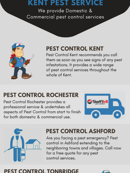 Great Pest Control in Tonbridge  Infographic