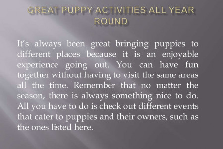 Great Puppy Activities All Year Round Infographic