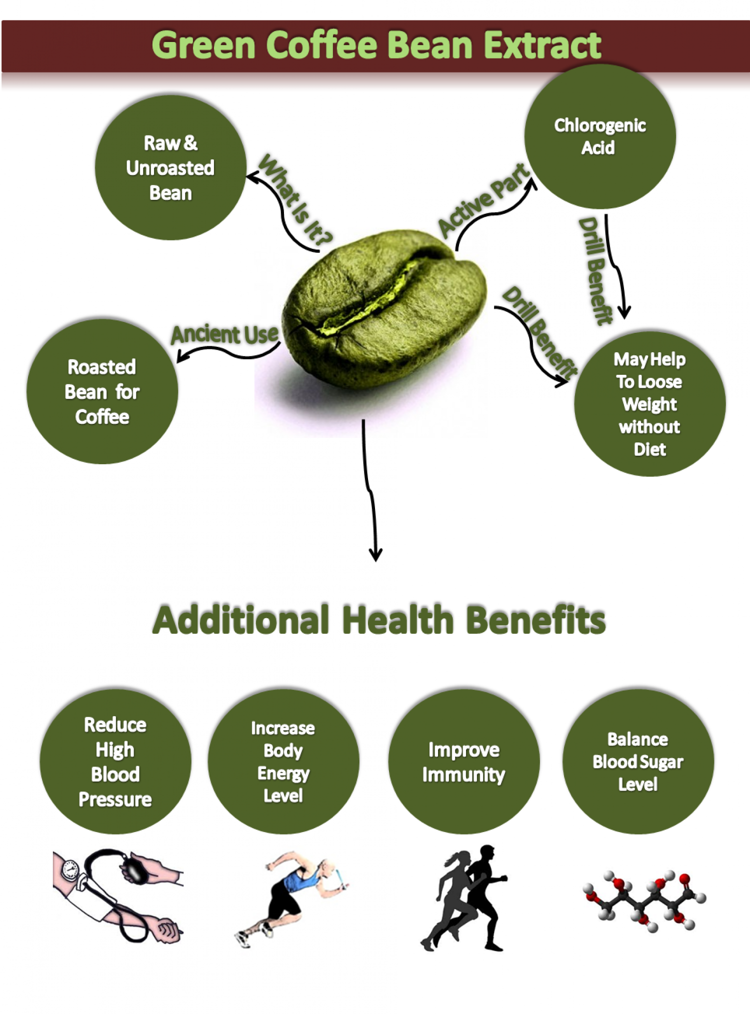 Green Coffee Bean Extract Visual Ly