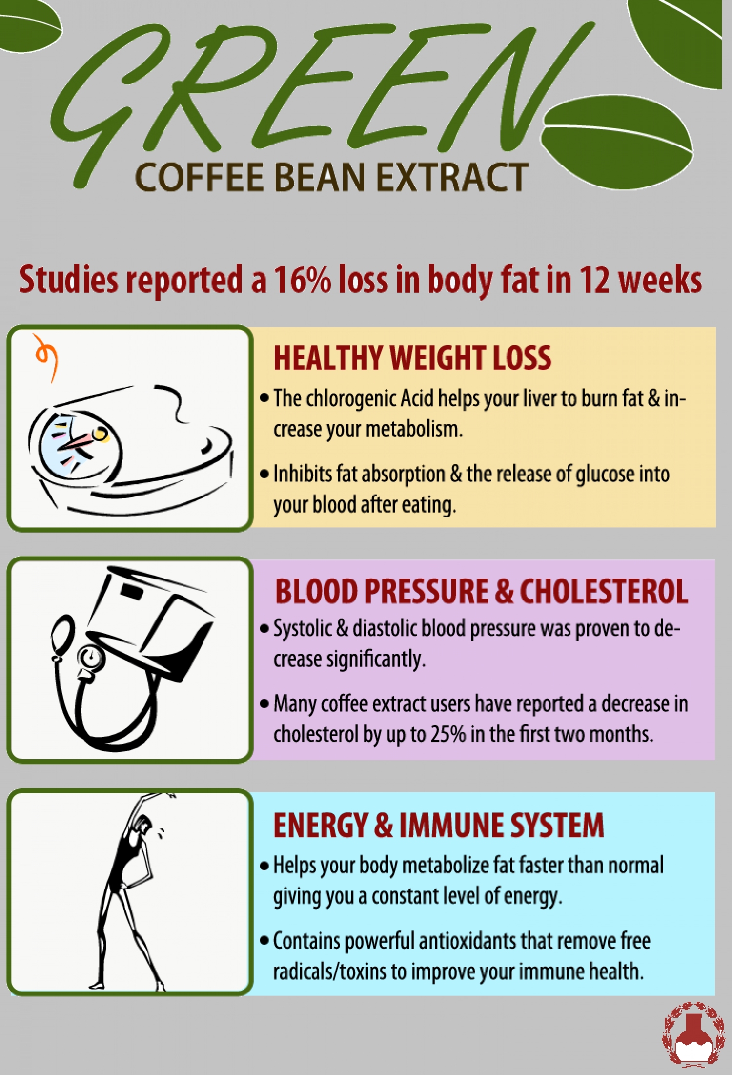 Green Coffee Is Beneficial Infographic