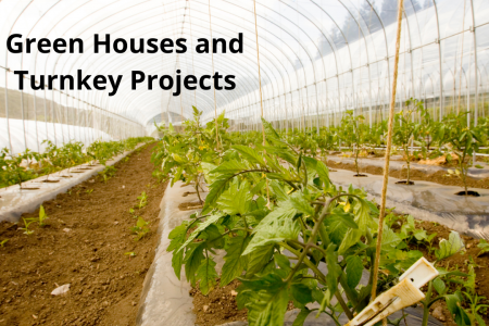 Green Houses and Turnkey Projects Infographic