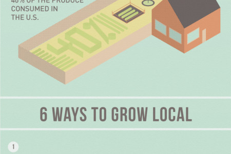 Grow Where You Are Infographic