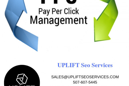 Grow Your Business With Best PPC Service Provider in Austin, TX Infographic