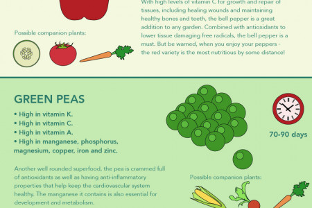 Grow Your Own Superfood Garden Infographic