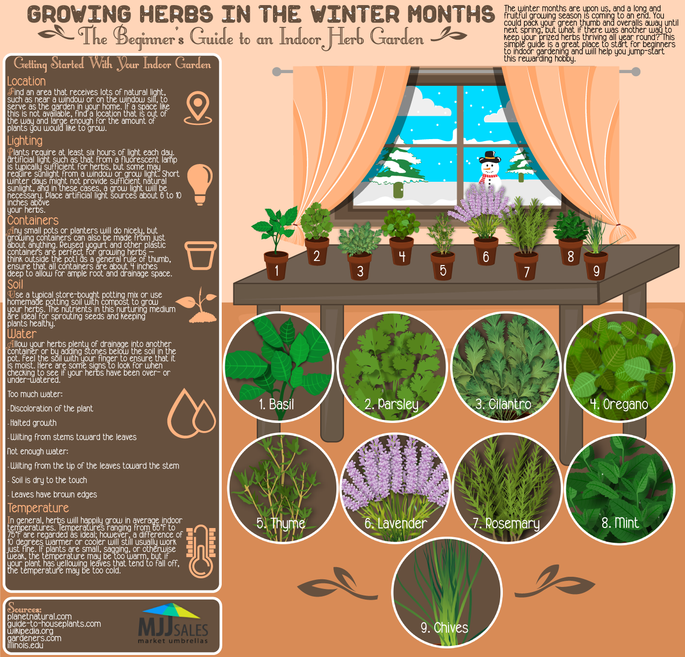 growing herbs in the winter months  visual.ly, Beautiful flower