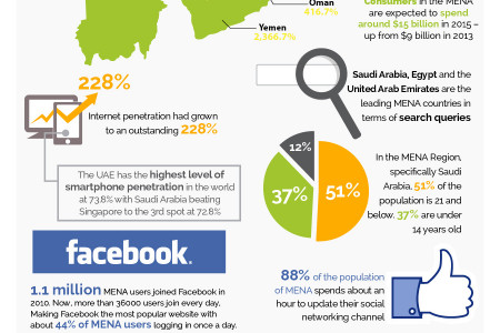 Growing Importance of SEO in the MENA Region Infographic