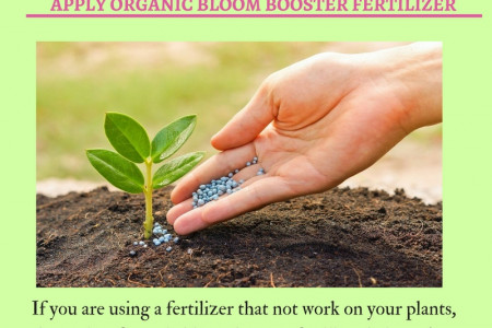 Growing Your Plants Using Bloom Booster Fertilizer Infographic