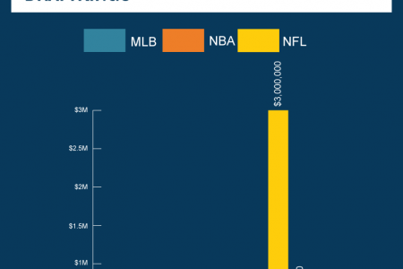 Growth in Daily Fantasy Sports Infographic