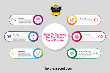 Guide To Choosing The Best Forex Signal Provider Infographic