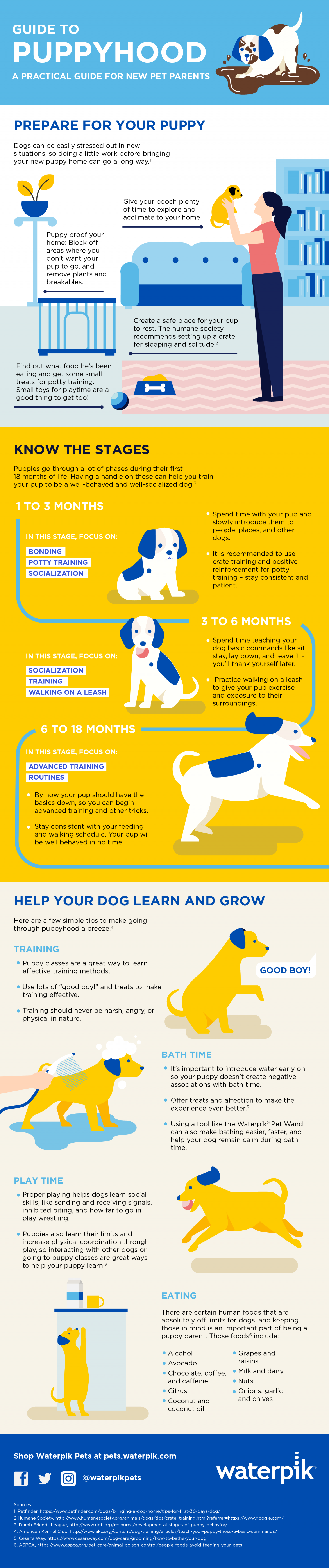 Guide to Puppyhood Infographic