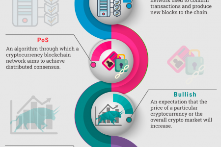 Guide To The Cryptocurrency Terminologies Infographic