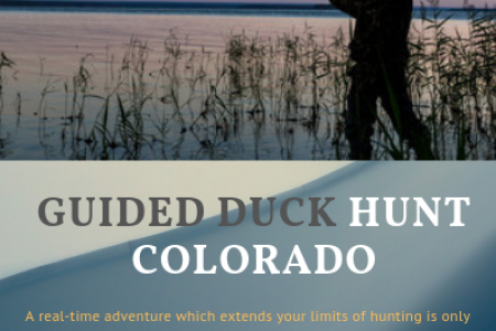 Guided Duck Hunt Colorado Infographic