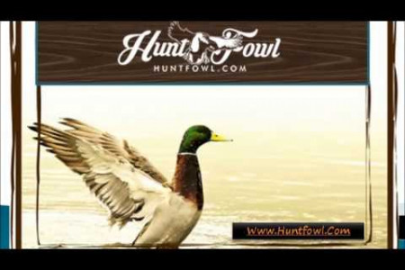 Guided Duck Hunting Infographic