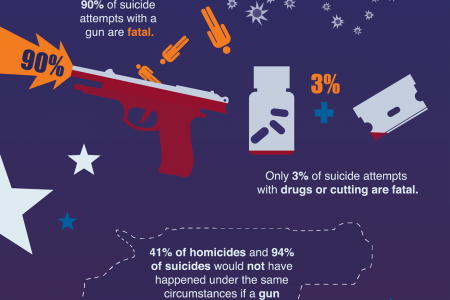 Guns in the U.S.A. Infographic