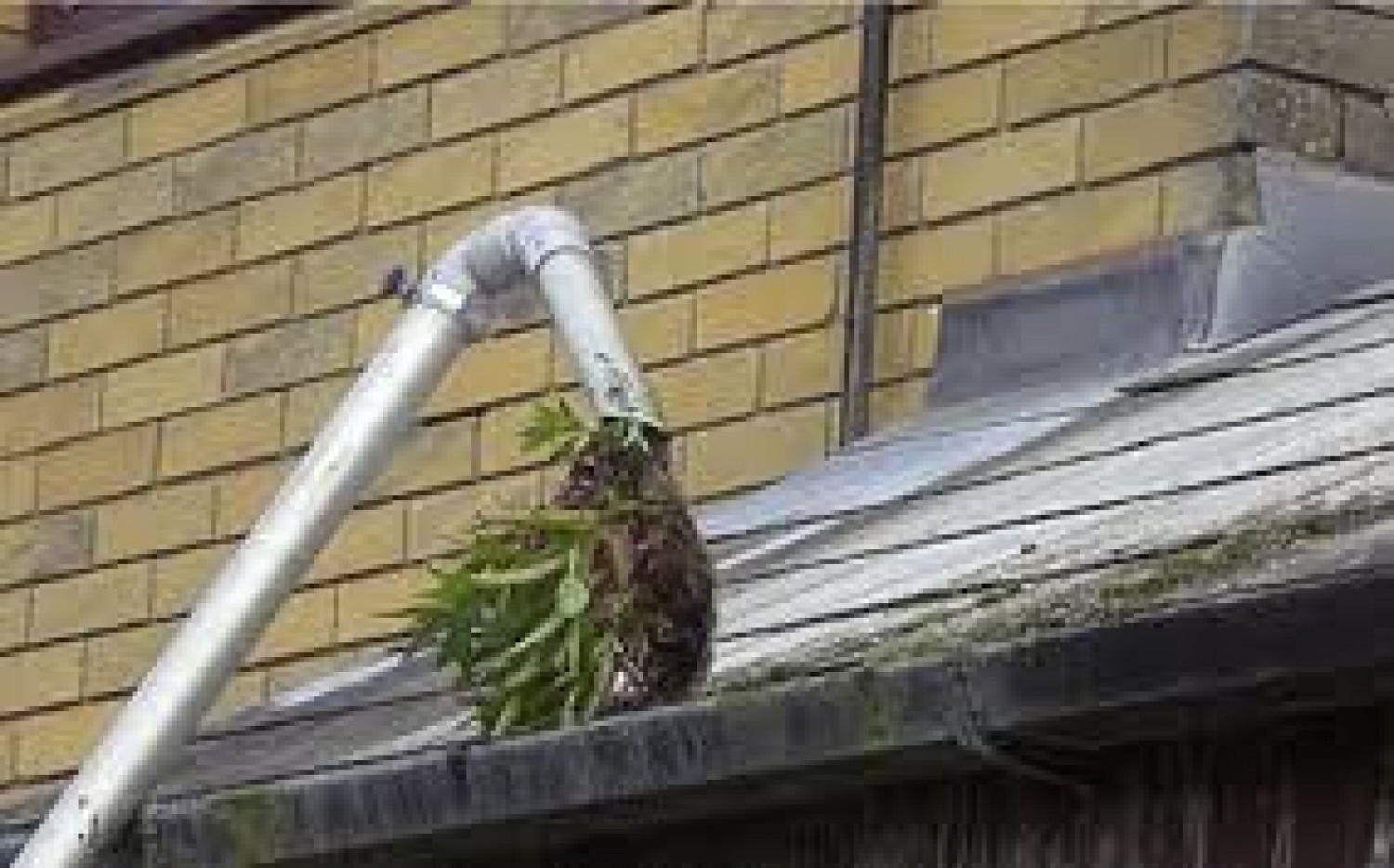 Gutter Cleaning Services London offer Reliable and Satisfactory Results Infographic