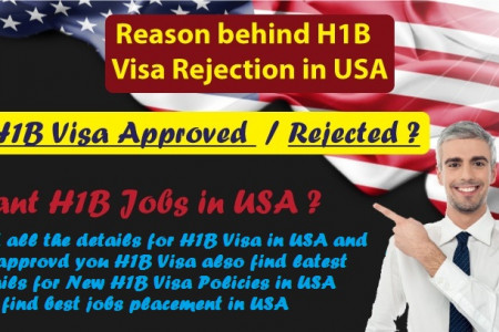 H1B Visa Rejection Infographic